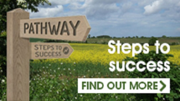 Pathway; Steps to Success